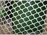 pe塑料制品/pe塑料平网/养殖塑料网