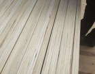 LVL 层积材 出口免熏蒸 出口品质 杨木胶合板 顺向板