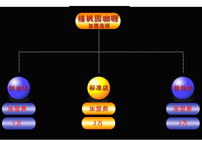 槿枫园咖喱加盟模式.png