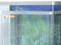 佛山市乐从镇 专业订造鱼缸 订做鱼缸 出售鱼缸水族箱