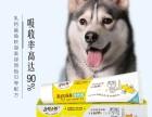 多啦小萌宠物营养膏批发零售