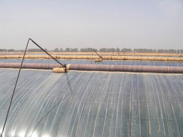 日光温室建设厂家——口碑好的日光温室哪里有