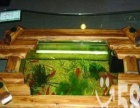 福州清洗鱼缸 景致护理 鱼草养护 鱼缸保养 鱼缸维