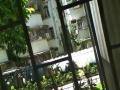 西丽7号线 押一付一  有阳台采光好  图片真实