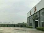 坪山G15高速 3000平米11米高钢构出租
