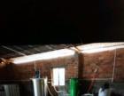 电白羊角镇山和旧营村 厂房 532平米