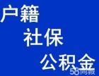 青岛落户,社保公积金挂靠,职称评定,档案托管