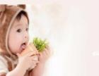 【国家专利】中国娃儿童摄影 无闪光灯 实景影棚