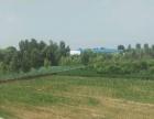 回河镇北郭村220国道 土地 5000平米