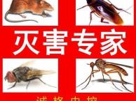 潍坊除蟑螂灭老鼠公司 专业除蟑螂灭老鼠公司