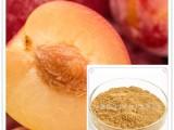 樱桃李提取物 速溶粉 浓缩液 浓缩汁 超微粉