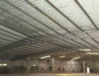 东区单一层700平米钢构便宜出租高6.5米