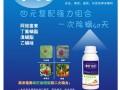 广西柑橘专用杀螨剂,柑橘抗性红蜘蛛特效药,长效杀螨剂