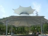 热销山东膜结构景观棚 景区遮阳棚 艺术观赏棚包邮包设计
