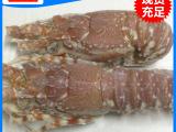 厂家直销 冷冻小龙虾 玫瑰小龙虾 价格实