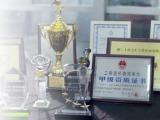 上海市上海IT审计项目咨询如何去辨别选择