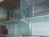 出售出售海鲜套缸制冷设备