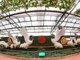 平顶山瓜果雕塑|手法细腻的蔬菜雕塑出售
