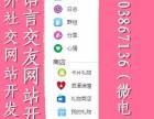 海外社交网站系统开发国外社交网站开发