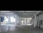 福全金三角3000平标准厂房 可分隔
