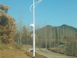 山东新农村太阳能路灯LED路灯户外照明道路灯