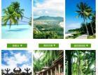 【当地旅行社】海南三亚/海口旅游团跟团旅行纯玩特价限时抢购多日游