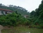湖北省鄂州市梁子湖区山林山庄 土地 66000平米