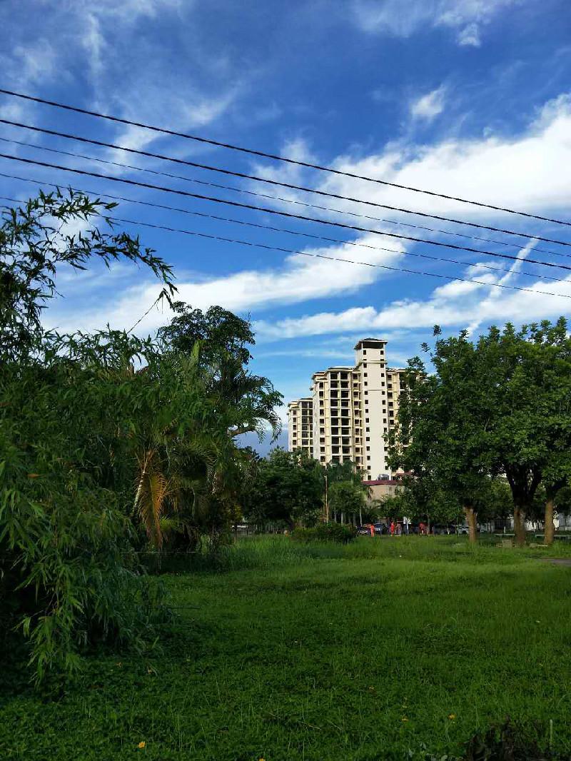 美丽海南岛 世界长寿之乡 天然氧吧美丽海南岛