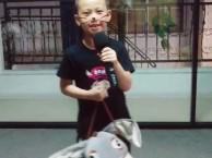 少儿学唱歌儿童声乐培训专业音乐