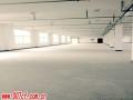 启东新港工业园区厂房出租 出售