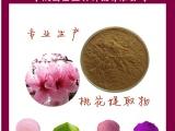 供应桃花提取物 桃花粉 天然水溶性无添加 厂家直发
