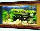 广州专业生产壁挂式鱼缸广州鱼缸供应商广州壁挂式鱼缸订做鱼缸厂