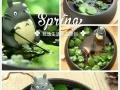 植物DIY-玩逸生活 健康生活看得见