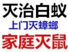 荔湾区灭白蚁 荔湾区白蚁防治 广州白蚁防治公司 低价除白蚁