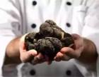 餐桌上的钻石 黑松露(Truffle)