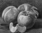 苏州美术素描水粉培训班成就艺术人生