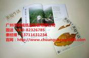 广州地区质量好的纸制品包装 广东海报批发