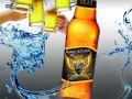 央视广告啤酒招商加盟贵州 新疆 安徽 西藏