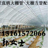 浙江嘉兴海盐县大棚钢架 厂家供应 镀锌管葡萄大棚钢管6分25