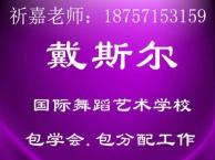 温州成人舞蹈培训,开设钢管,形体瑜伽,爵士,民族,古典