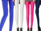 秋装新款彩色修身显瘦弹力荧光色九分裤 时尚糖果色大码女打底裤