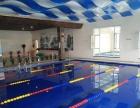 海阳潜水游泳俱乐部2017年署假学生游泳培训班