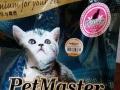 佩玛思特新配方猫粮
