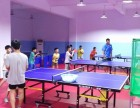 星火乒乓球俱乐部全年招生进行中