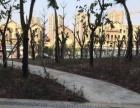 (个人房源)杏林灌口 龙湖嘉屿城二期 优质店面招租