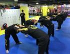上海成人武术一对一私教培训班