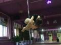 寒假苏州钢管舞健身班培训 学钢管舞减肥塑形