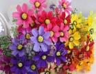 工程装饰仿真花,仿真花厂家批发,仿真花布置花价格