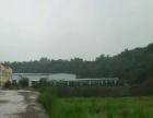 侯堡镇戴庄村 厂房 2000平米