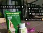 美资堂植物蛋白减肥药
